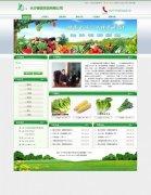 企业购物网站模板