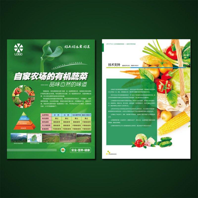蔬菜彩页设计模板