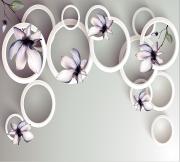 圈圈 抽象 玉兰花