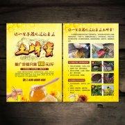 土蜂蜜宣传彩页DM单