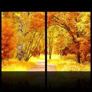秋天梧桐树林无框画