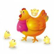母鸡与雏鸡素材