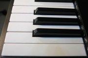 美科电子钢琴乐器黑白琴键高清特写