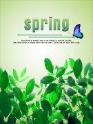清新时尚春夏产品服务宣传通用海报矢量模板