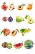 14种水彩水果PSD素材