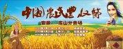中國農民豐收節舞臺背景