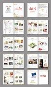 原创企业画册宣传册设计