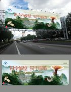 破壁灵芝孢子粉户外广告