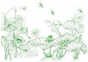 君子莲花蜻蜓飞舞-工笔画.