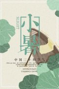 中国传统二十四节气小暑主题宣传海报