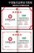 中国弛名品牌荣誉证书模版