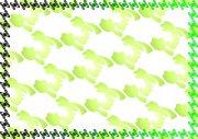 花花綠綠 環保證書紋