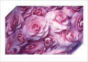 粉紅色花盒